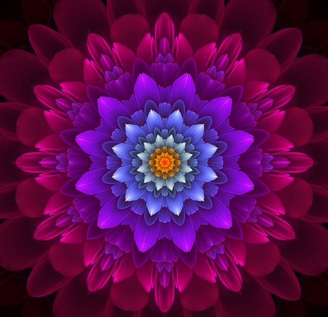 flor-do-amor