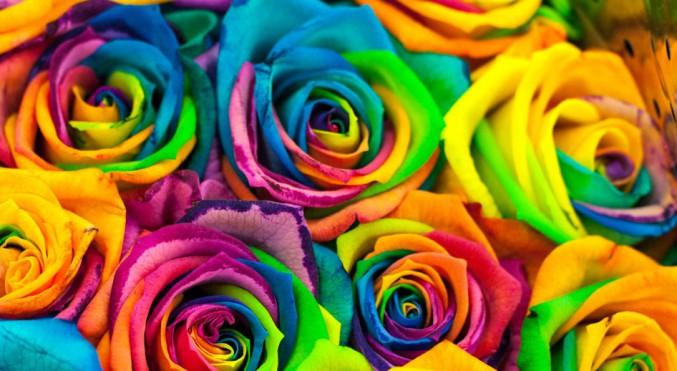 barvy a léčení