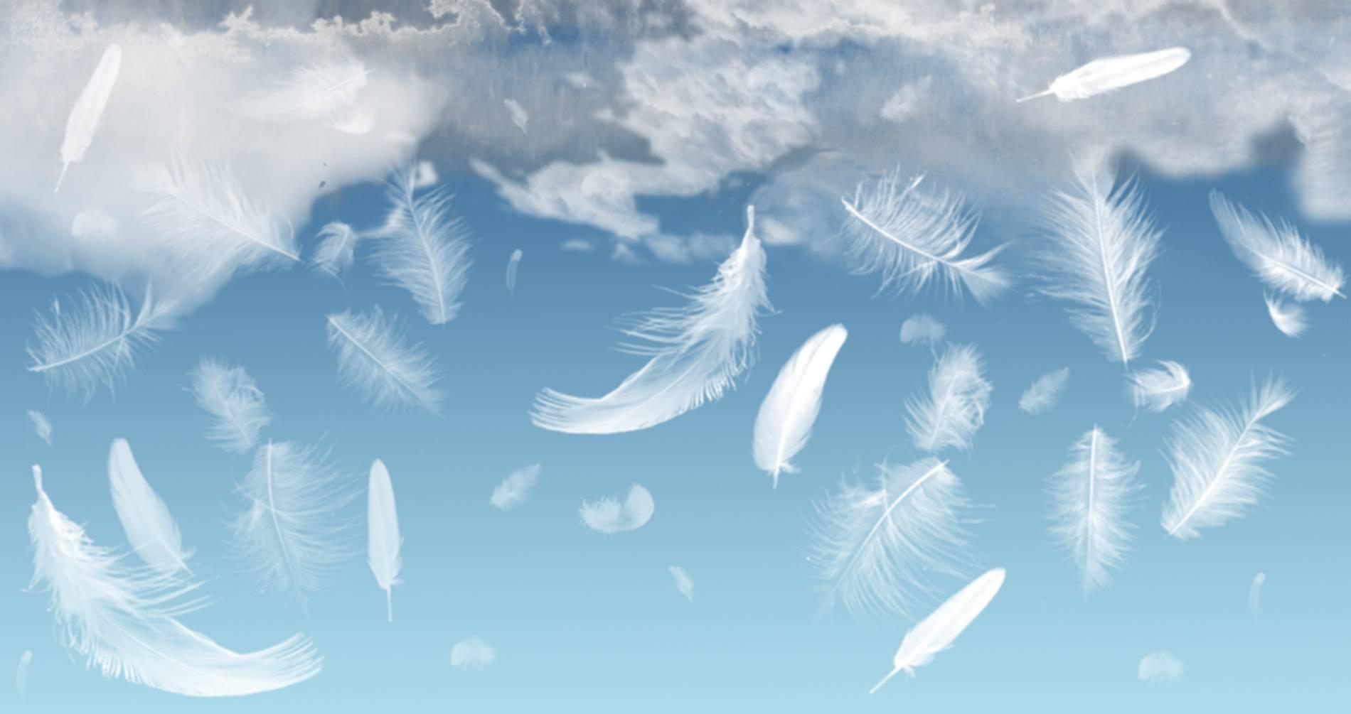 andělé lásky