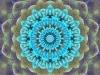 flores-no-mar